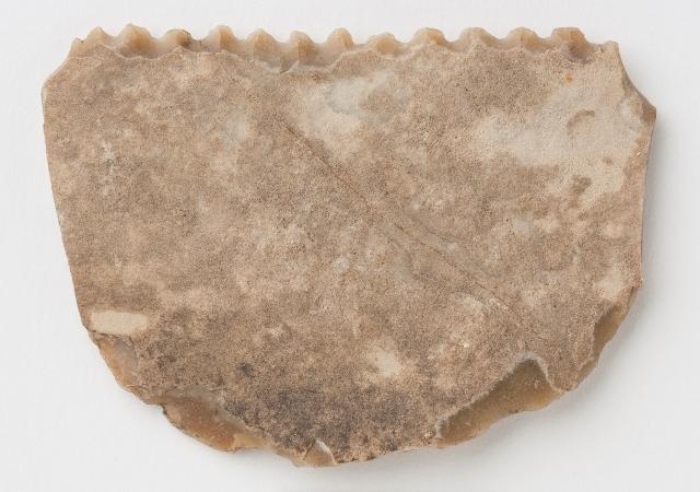 Diente de hoz de Moncín (Borja)